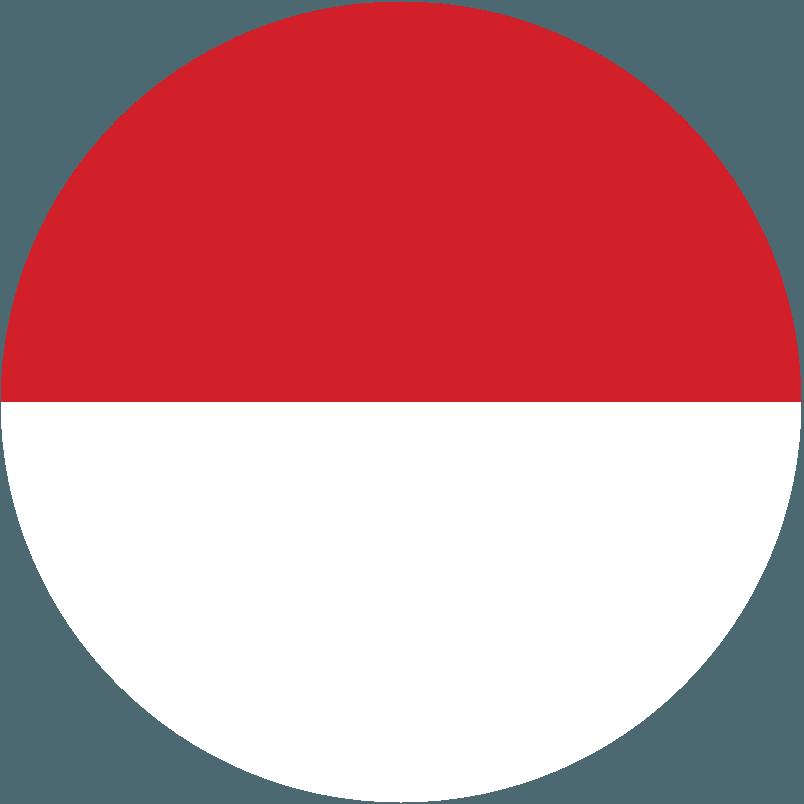 インドネシア代表男子
