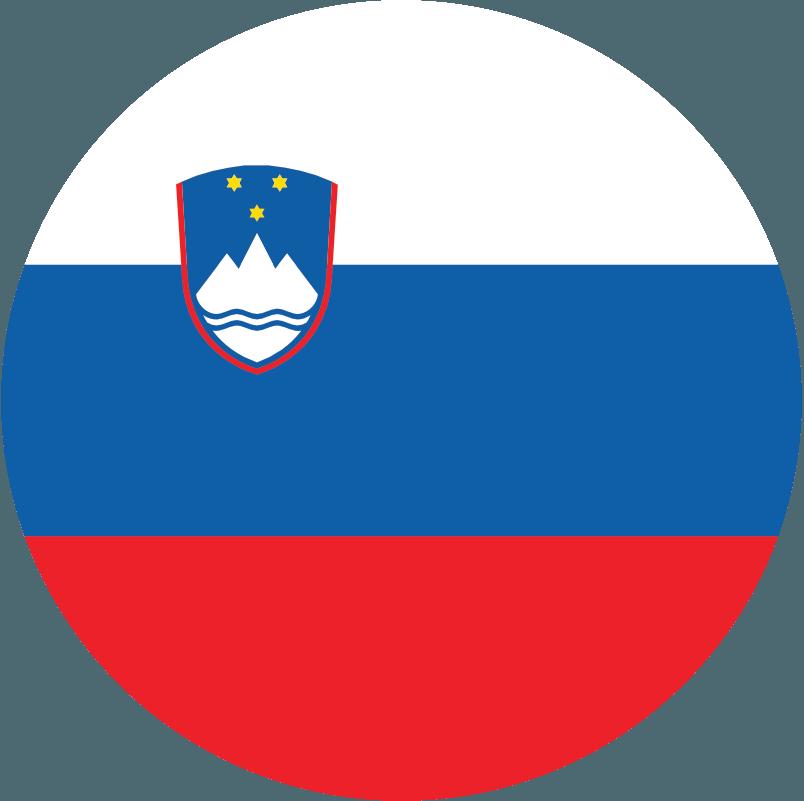 スロベニア代表男子