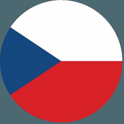 チェコ代表男子
