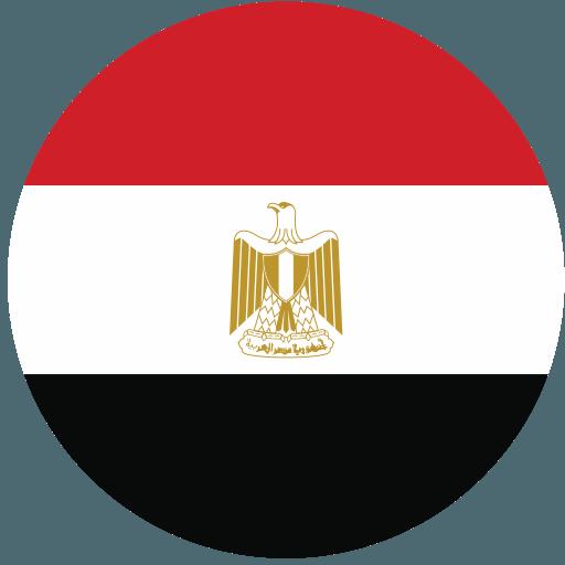 エジプト代表男子