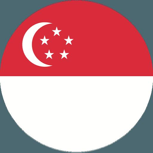 シンガポールペア